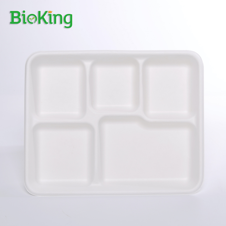 5-Compartment Rectangle Tray